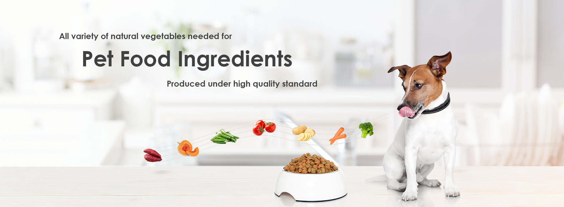 All variety of natural vegetables needed for Pet food ingredients produced under high quality standard