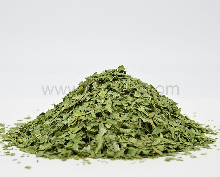 Leek (Green)