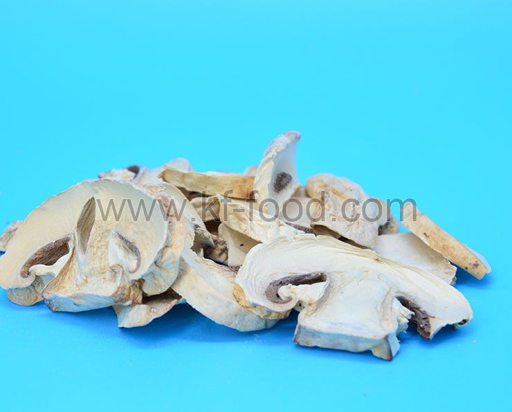 Champignons Mushroom