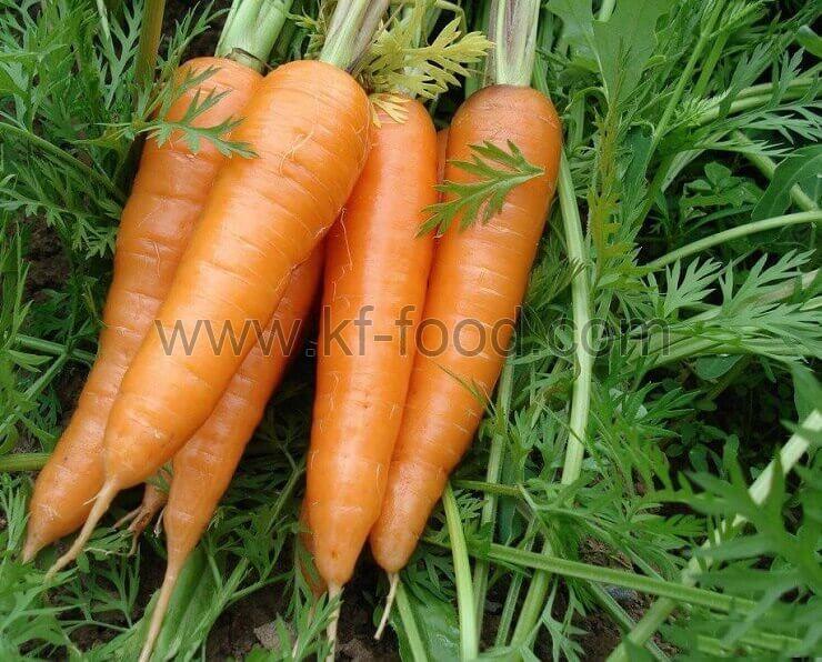 Carrot Strips